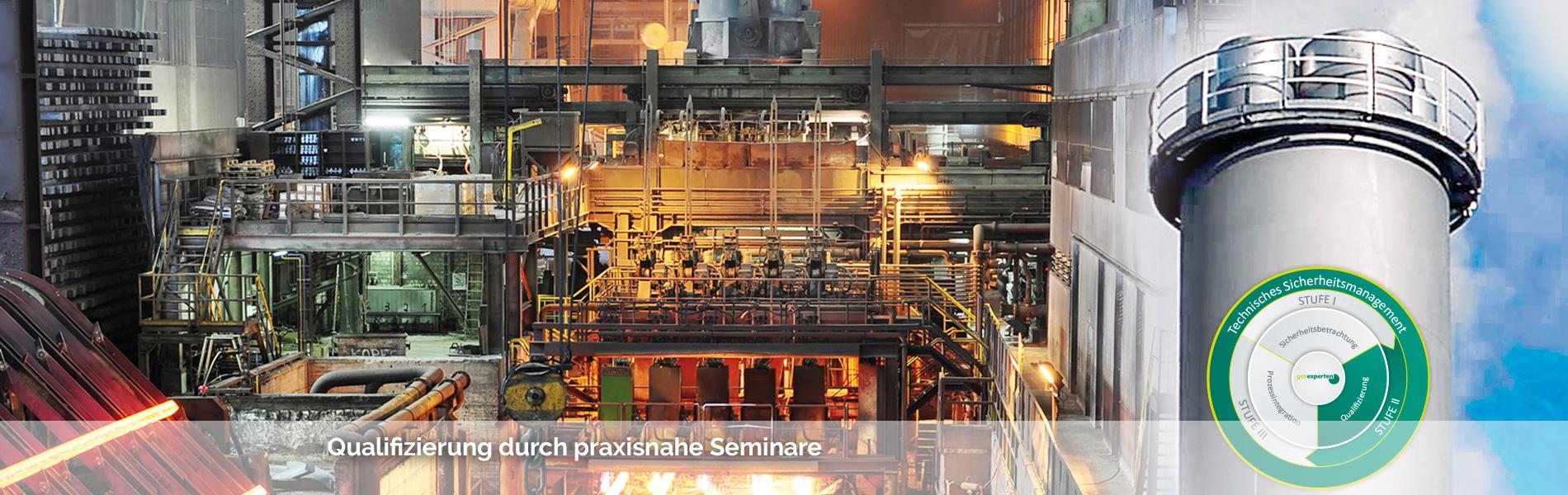 Seminare gasexperten